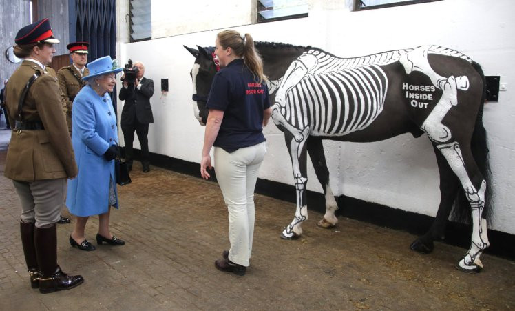 Her Majesty Queen Elizabeth II meets Gillian Higgins and Horses Inside Out