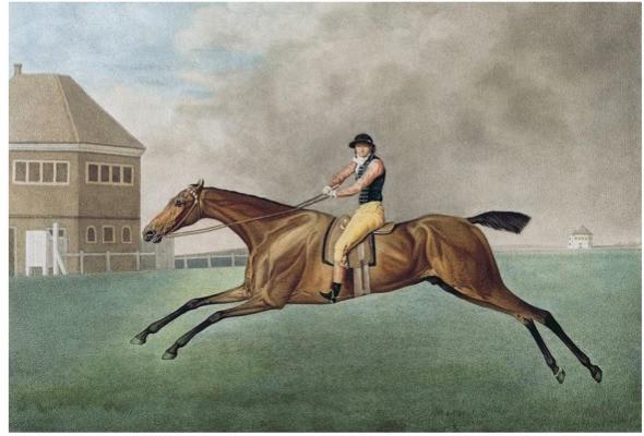 Galloping race horse, art, painting, george stubbs, anatomy