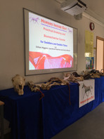 Using Bones at the Saddlers Course