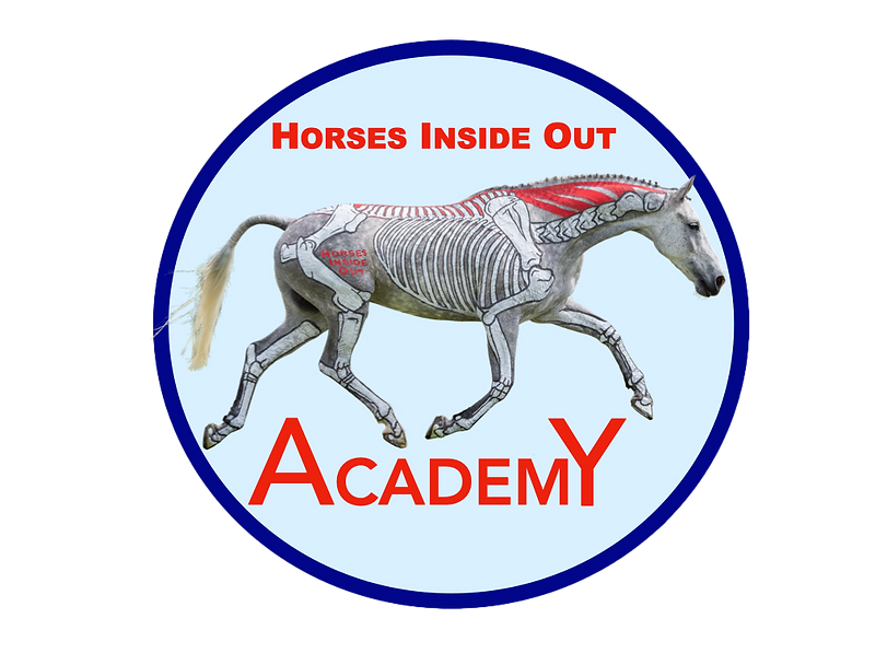 Horses Inside Out Academy, Online Learning Hub - free membership, watch free tutorial videos, video lectures, video courses, webinars education in equine anatomy, biomechanics, physiology, health, care, training tips, pilates, massage, therapy for horses
