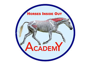 The Horses Inside Out Academy is our online learning hub. Free tutorial videos, webinars online video lectures and courses