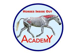 Academy logo.005.jpeg