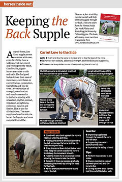Pilates for Horses, Exercises for keeping your horse's back supple, mobile and strong