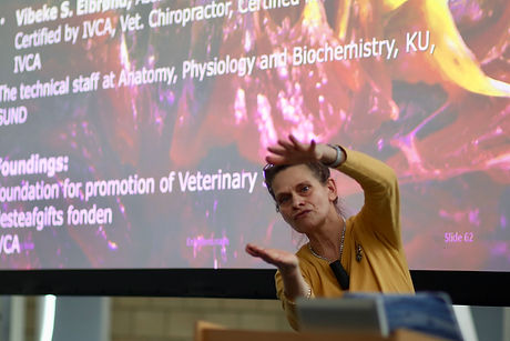 Dr Vibeke Elbrond explains equine kinetic myofascial chains at the Horses Inside Out annual conference