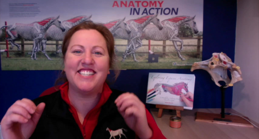the Horses Inside Out Academy, online learning for equestrians interested in anatomy and biomechanics with Gillian Higgins