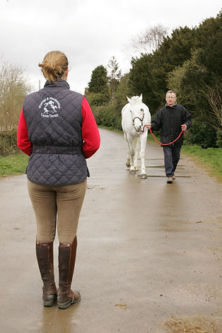 Gillian Higgins assess equine movement and posture