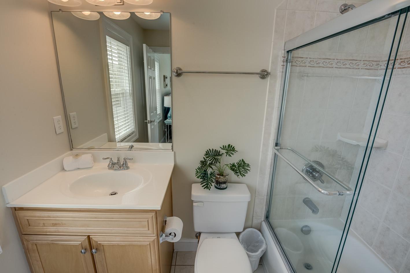 Blue Flower Bathroom