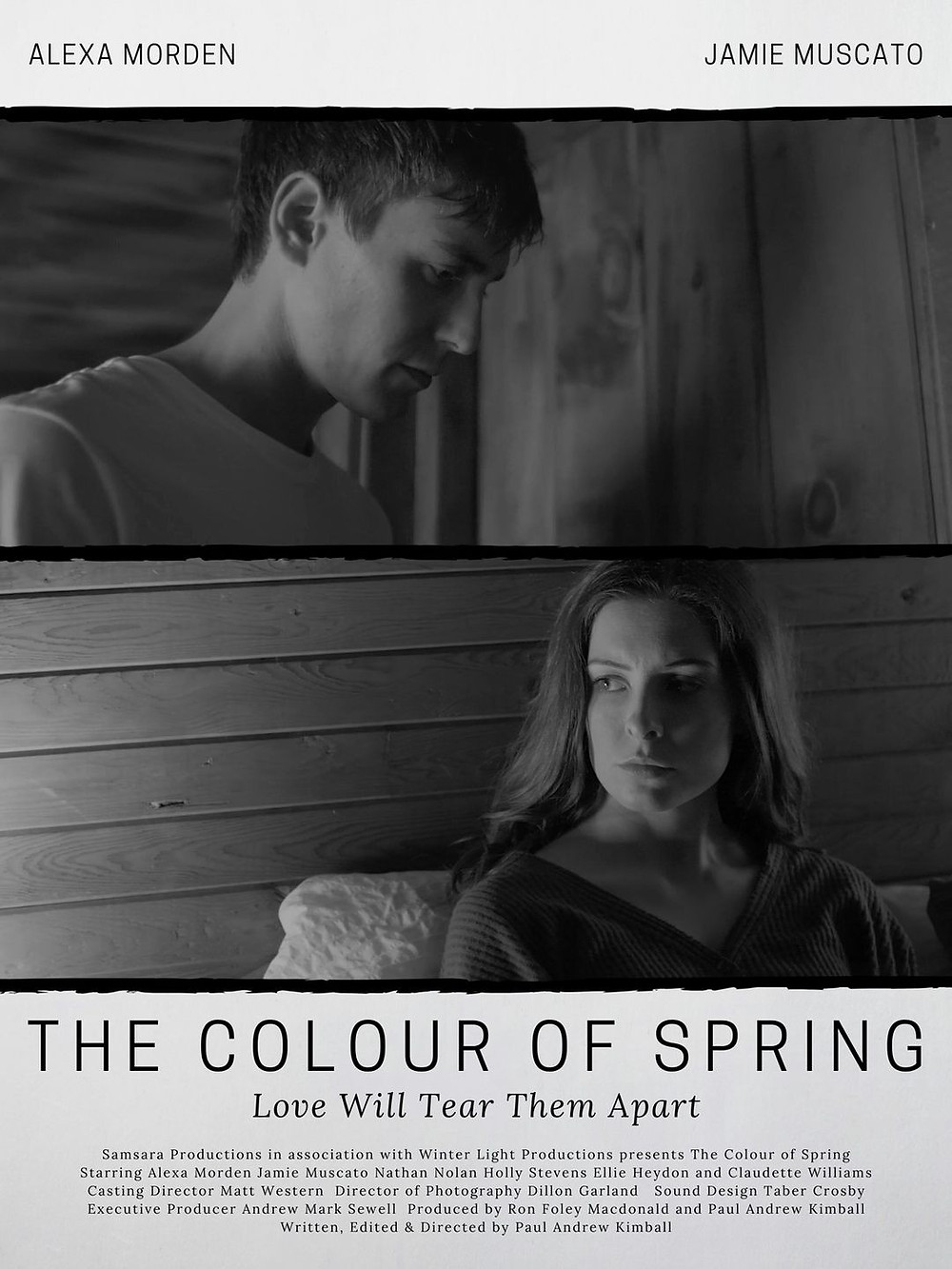 Poster for The Colour of Spring showing protagonists.
