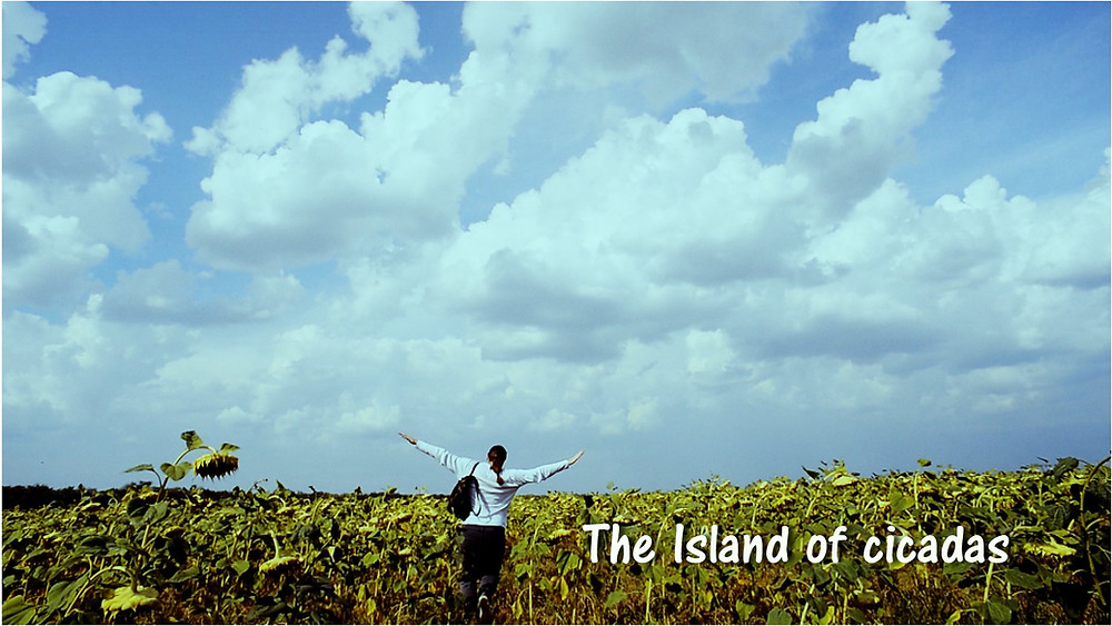 Still Image from The Island of Cicadas showing protagonist in field.
