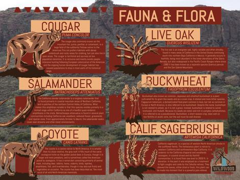 Wildwod Regional Park Intrepretive Poster