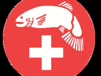 Grosse Umfrage des SFV zur Fischerei