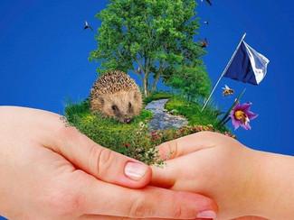 Rettet die Zürcher Natur