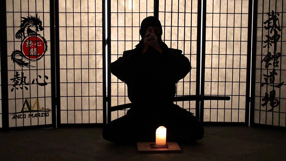Nesshin Ryu Dojo Ninja