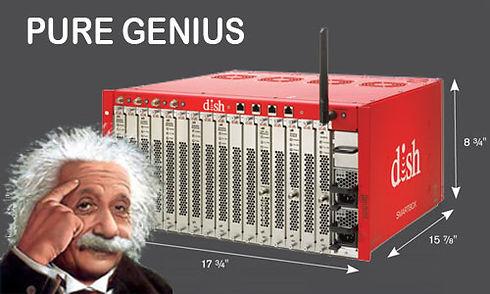 PureGenius-Einstein.jpg