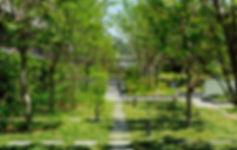 cielia_08.jpg
