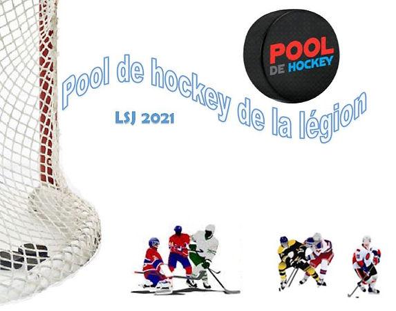 Pool_de_hockey.JPG