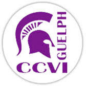 ccvi logo.jpeg