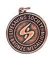 hippo-bronze-medallion.jpg