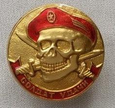 Значок мет. Солдат удачи (череп в крапов. берете)