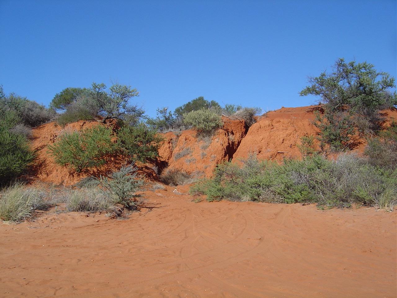 Australië 2006