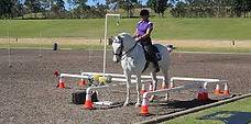 working equitation.jpg