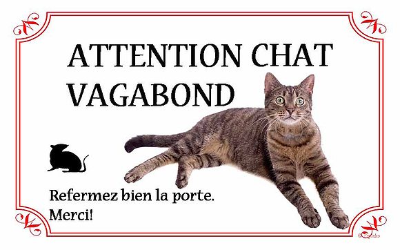 Chat 19