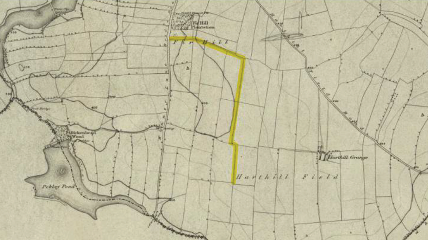 Harthill's Oldest Footpath?
