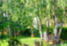 Small Backyard Landscape Idea