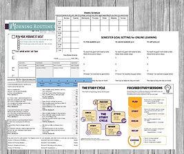 Infographic - canva worksheet design.jpg