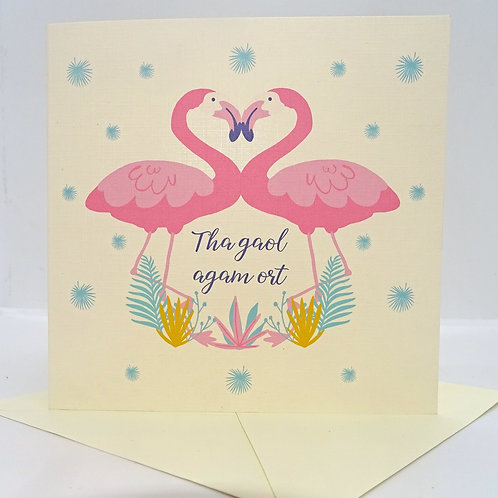 Scottish Gaelic Flamingo Valentine's Card - can be personalised