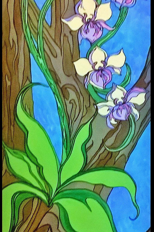 Orchids in a Tree