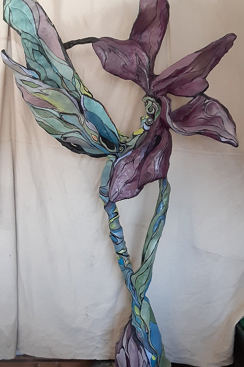 Dragonfly , Flora
