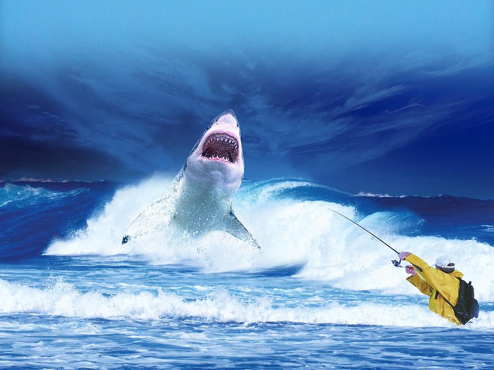 Recuerda, hay ideas que es mejor devolver al mar.