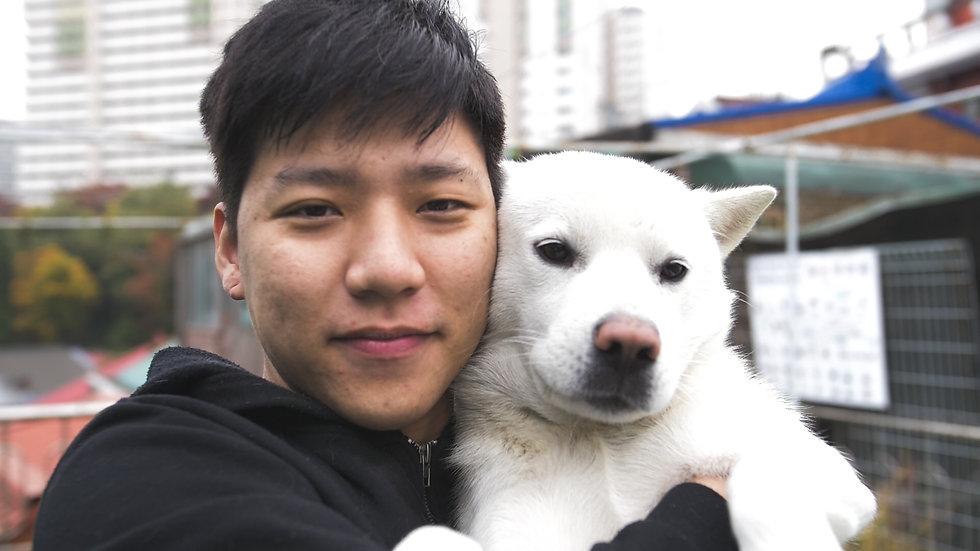 DH Dog Portrait.jpg