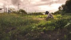 Farm_Life7.jpg