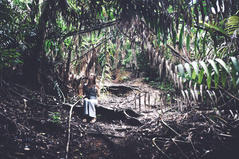 Wander - Malaysia