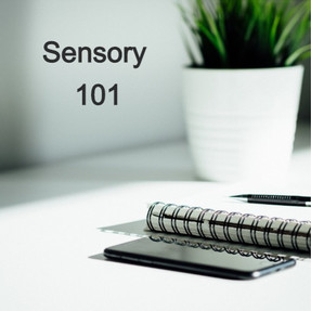 Sensory 101
