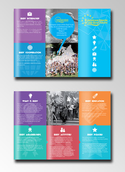 Information Leaflet for EUDY