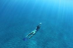 Underwater Shoot, Westside