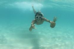 Underwater Pineapple, North Shore