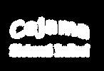 cejama logo.png