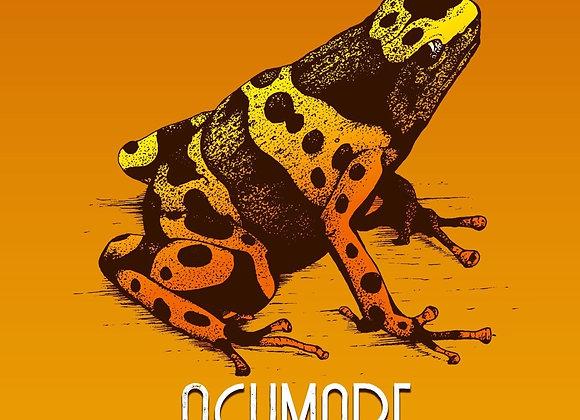 Ocumare-Venezuela 90%