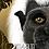 Thumbnail: Tierralta Dark 90%                     -  Single Variety