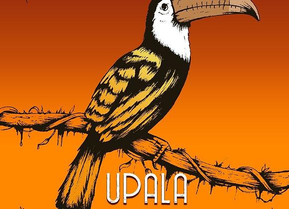 Upala-  Costa Rica Dark Milk 50%  (Lait )