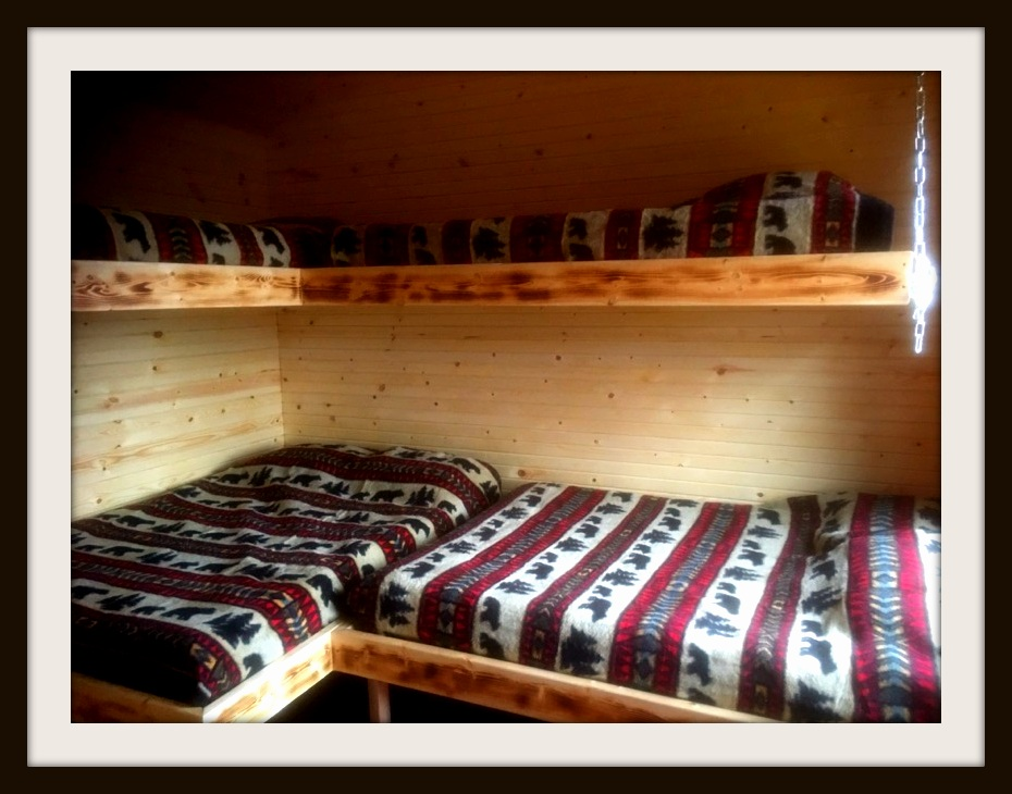 Bunk Room Beds