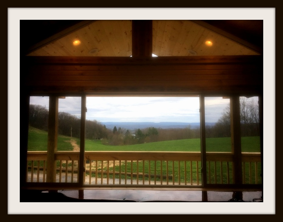Main Room Window View