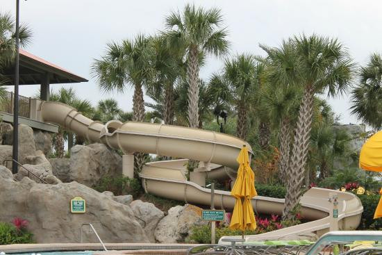 Grand Cypress Pool