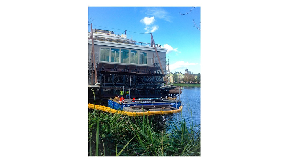 Disney Springs Paddlefish Engineered by Entech
