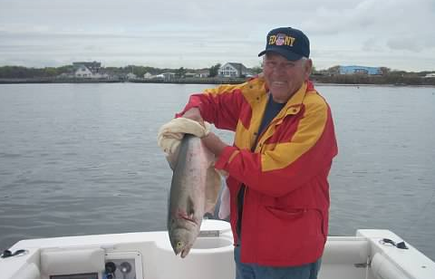 bob bluefish_edited.jpg