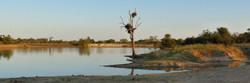 Kruger Park waterhole, South Africa